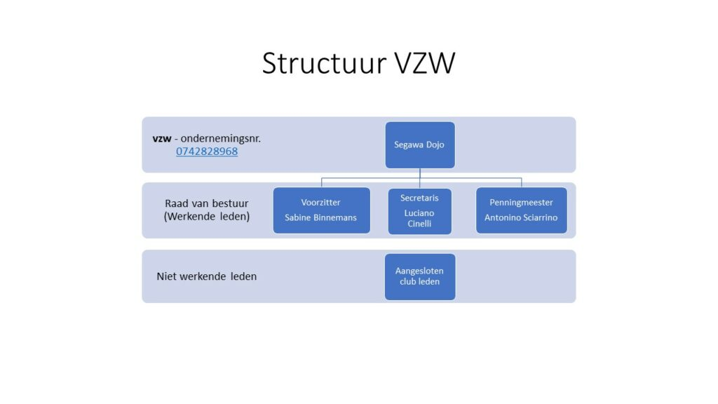 vzw structuur